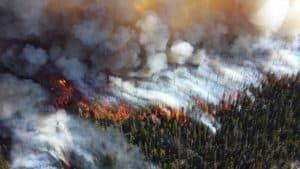 BOS Drohnen Anwendung: Luftaufklärung bei Waldbränden